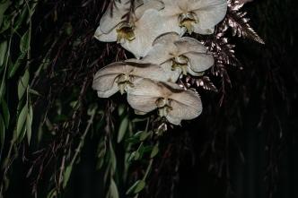flowers ElizabethStyledShoot (240)